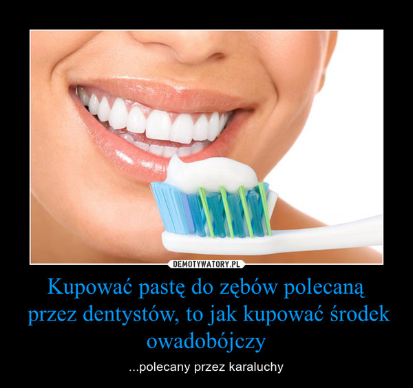 Kupować pastę do zębów polecaną przez dentystów, to jak kupować środek owadobójczy – ...polecany przez karaluchy