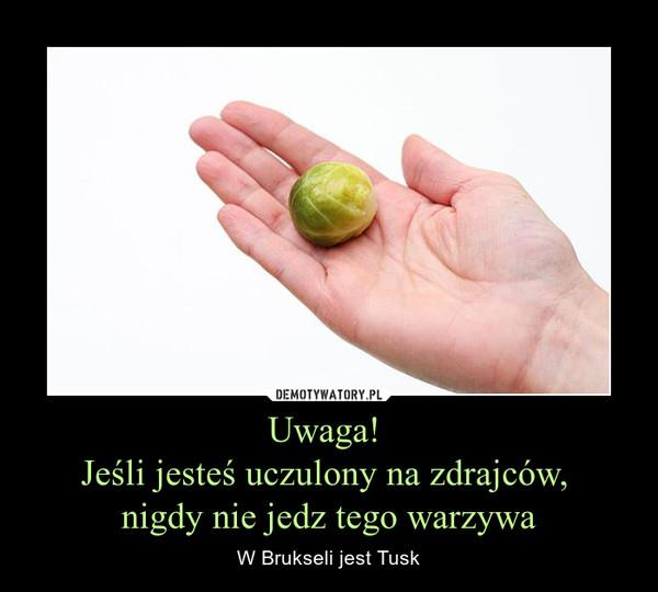 Uwaga! Jeśli jesteś uczulony na zdrajców, nigdy nie jedz tego warzywa – W Brukseli jest Tusk