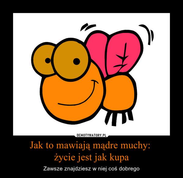 Jak to mawiają mądre muchy: życie jest jak kupa – Zawsze znajdziesz w niej coś dobrego