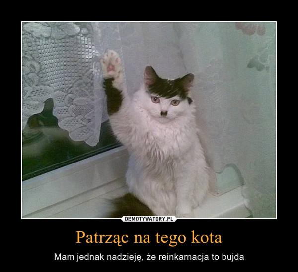 Patrząc na tego kota – Mam jednak nadzieję, że reinkarnacja to bujda