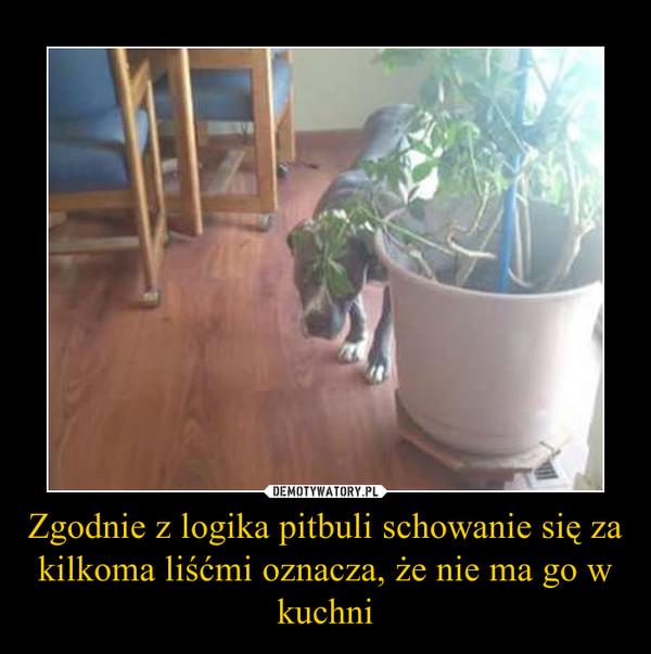 Zgodnie z logika pitbuli schowanie się za kilkoma liśćmi oznacza, że nie ma go w kuchni –