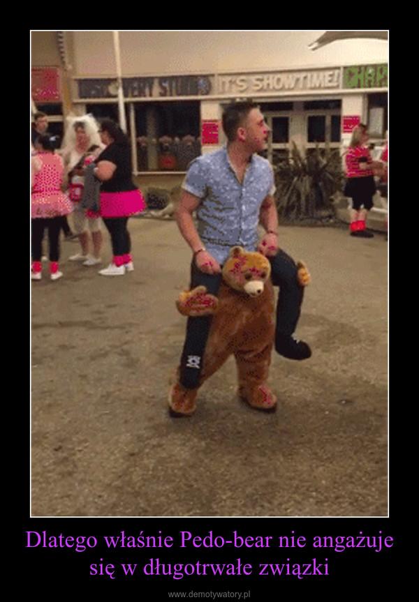 Dlatego właśnie Pedo-bear nie angażuje się w długotrwałe związki –