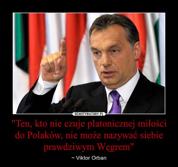 """""""Ten, kto nie czuje platonicznej miłości do Polaków, nie może nazywać siebie prawdziwym Węgrem"""" – ~ Viktor Orban"""
