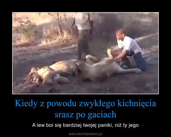 Kiedy z powodu zwykłego kichnięcia srasz po gaciach – A lew boi się bardziej twojej paniki, niż ty jego
