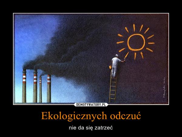 Ekologicznych odczuć – nie da się zatrzeć