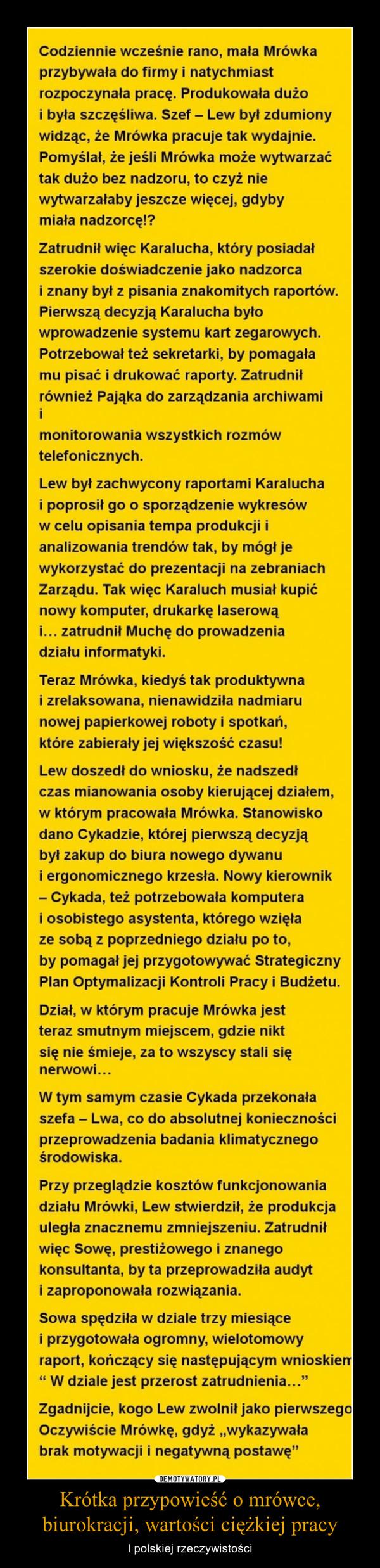 Krótka przypowieść o mrówce, biurokracji, wartości ciężkiej pracy – I polskiej rzeczywistości
