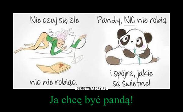 Ja chcę być pandą! –