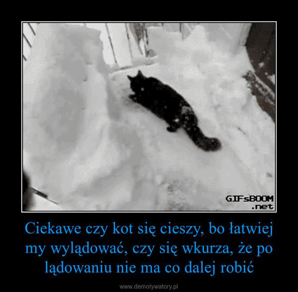 Ciekawe czy kot się cieszy, bo łatwiej my wylądować, czy się wkurza, że po lądowaniu nie ma co dalej robić –