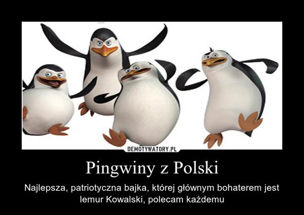 Pingwiny z Polski – Najlepsza, patriotyczna bajka, której głównym bohaterem jest lemur Kowalski, polecam każdemu