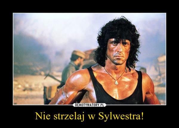 Nie strzelaj w Sylwestra! –