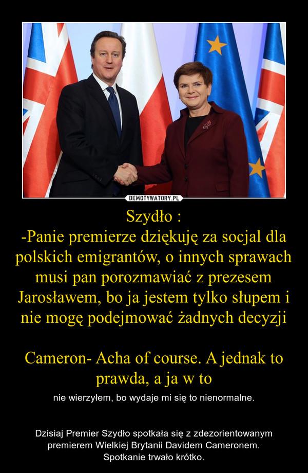 Szydło :-Panie premierze dziękuję za socjal dla polskich emigrantów, o innych sprawach musi pan porozmawiać z prezesem Jarosławem, bo ja jestem tylko słupem i nie mogę podejmować żadnych decyzjiCameron- Acha of course. A jednak to prawda, a ja w to – nie wierzyłem, bo wydaje mi się to nienormalne.Dzisiaj Premier Szydło spotkała się z zdezorientowanym premierem Wielkiej Brytanii Davidem Cameronem.Spotkanie trwało krótko.