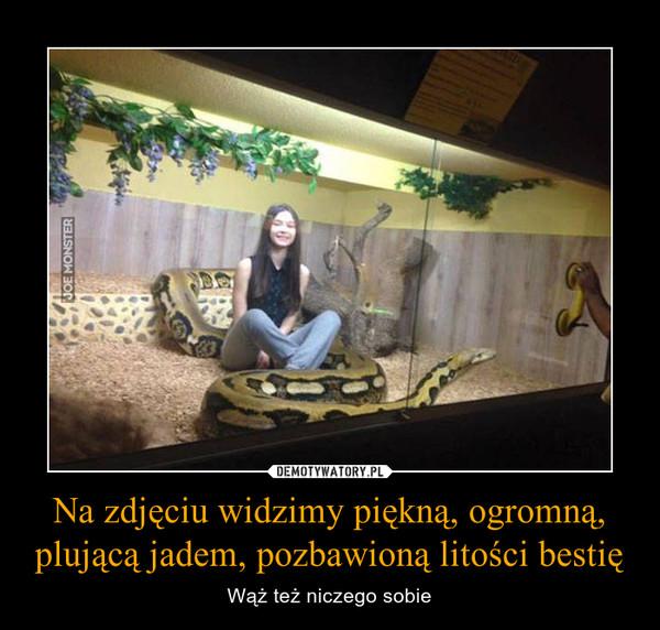Na zdjęciu widzimy piękną, ogromną, plującą jadem, pozbawioną litości bestię – Wąż też niczego sobie