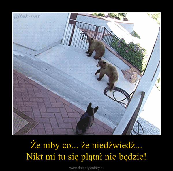 Że niby co... że niedźwiedź...Nikt mi tu się plątał nie będzie! –