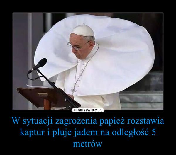 W sytuacji zagrożenia papież rozstawia kaptur i pluje jadem na odległość 5 metrów –