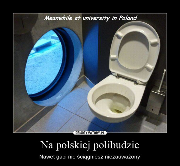 Na polskiej polibudzie – Nawet gaci nie ściągniesz niezauważony