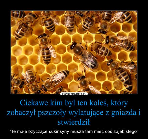 """Ciekawe kim był ten koleś, który zobaczył pszczoły wylatujące z gniazda i stwierdził – """"Te małe bzyczące sukinsyny musza tam mieć coś zajebistego"""""""
