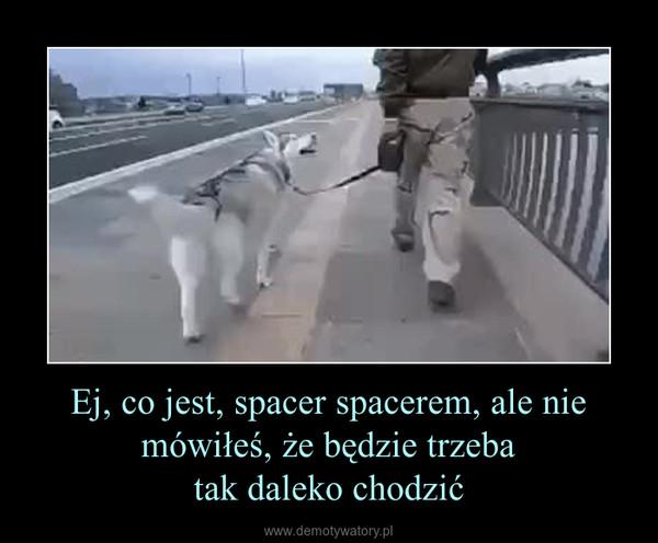 Ej, co jest, spacer spacerem, ale nie mówiłeś, że będzie trzebatak daleko chodzić –