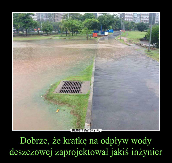 Dobrze, że kratkę na odpływ wody deszczowej zaprojektował jakiś inżynier –