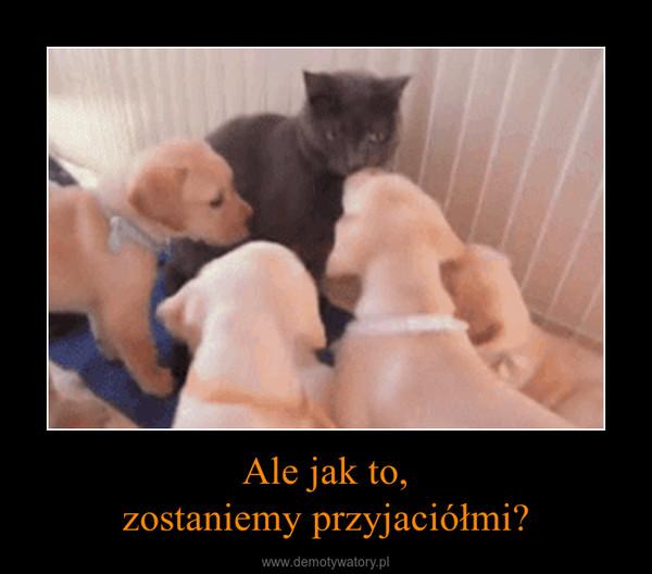 Ale jak to,zostaniemy przyjaciółmi? –