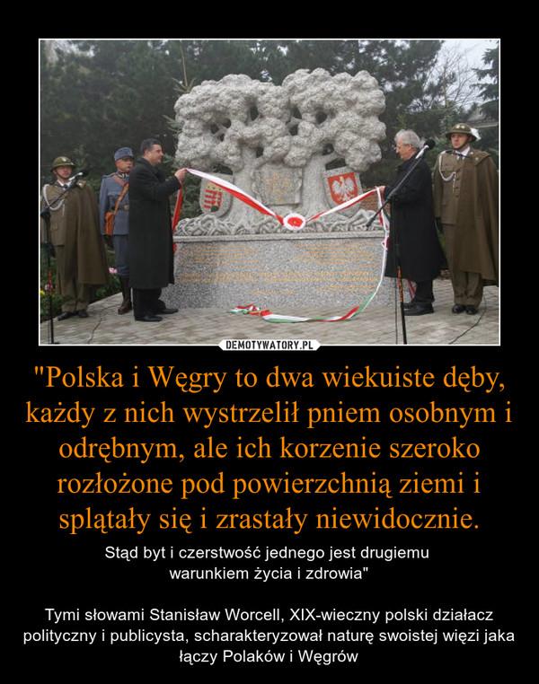 """""""Polska i Węgry to dwa wiekuiste dęby, każdy z nich wystrzelił pniem osobnym i odrębnym, ale ich korzenie szeroko rozłożone pod powierzchnią ziemi i splątały się i zrastały niewidocznie. – Stąd byt i czerstwość jednego jest drugiemu warunkiem życia i zdrowia""""Tymi słowami Stanisław Worcell, XIX-wieczny polski działacz polityczny i publicysta, scharakteryzował naturę swoistej więzi jaka łączy Polaków i Węgrów"""