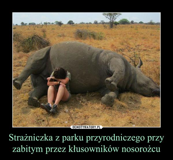 Strażniczka z parku przyrodniczego przy zabitym przez kłusowników nosorożcu –