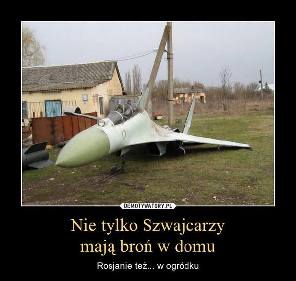 Nie tylko Szwajcarzymają broń w domu – Rosjanie też... w ogródku