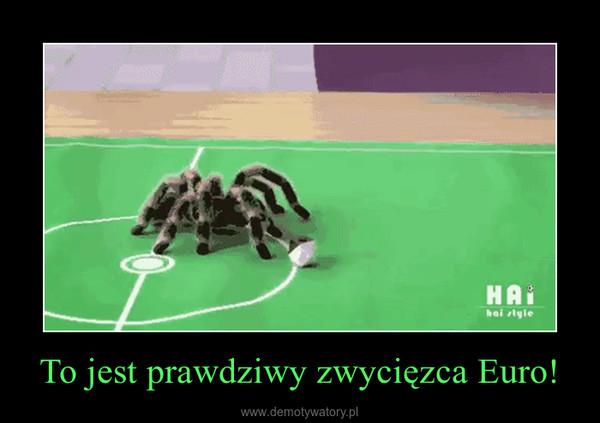 To jest prawdziwy zwycięzca Euro! –