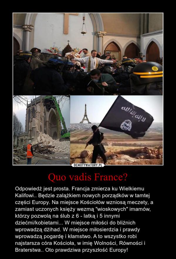 """Quo vadis France? – Odpowiedź jest prosta. Francja zmierza ku Wielkiemu Kalifowi.. Będzie zalążkiem nowych porządków w tamtej części Europy. Na miejsce Kościołów wzniosą meczety, a zamiast uczonych księży wezmą """"wioskowych"""" imamów, którzy pozwolą na ślub z 6 - latką i 5 innymi dziećmi/kobietami... W miejsce miłości do bliźnich wprowadzą dżihad. W miejsce miłosierdzia i prawdy wprowadzą pogardę i kłamstwo. A to wszystko robi najstarsza córa Kościoła, w imię Wolności, Równości i Braterstwa.. Oto prawdziwa przyszłość Europy!"""