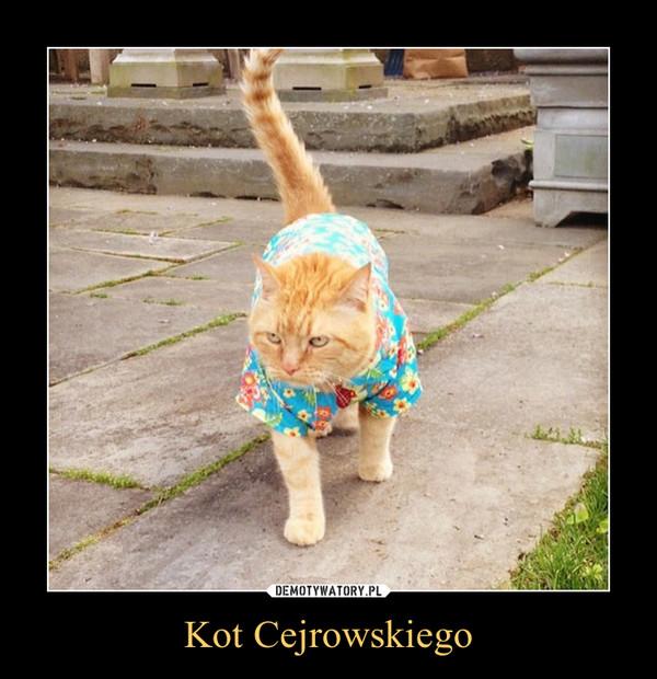 Kot Cejrowskiego –