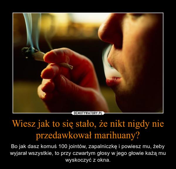 Wiesz jak to się stało, że nikt nigdy nie przedawkował marihuany? – Bo jak dasz komuś 100 jointów, zapalniczkę i powiesz mu, żeby wyjarał wszystkie, to przy czwartym głosy w jego głowie każą mu wyskoczyć z okna.