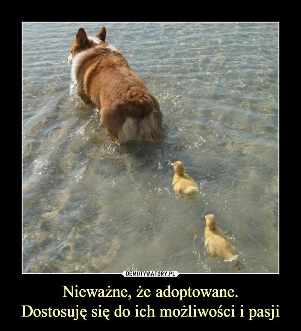 Nieważne, że adoptowane.Dostosuję się do ich możliwości i pasji –