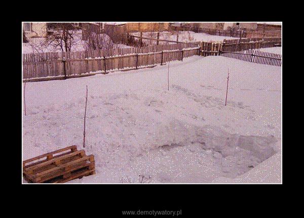 W tym sezonie zimowym –