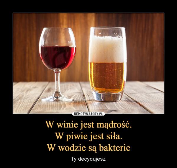 W winie jest mądrość.W piwie jest siła.W wodzie są bakterie – Ty decydujesz