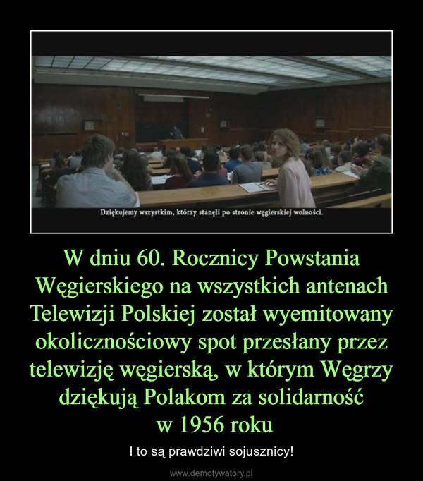 W dniu 60. Rocznicy Powstania Węgierskiego na wszystkich antenach Telewizji Polskiej został wyemitowany okolicznościowy spot przesłany przez telewizję węgierską, w którym Węgrzy dziękują Polakom za solidarność w 1956 roku – I to są prawdziwi sojusznicy!