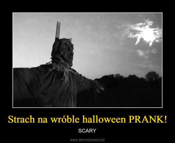 Strach na wróble halloween PRANK! – SCARY
