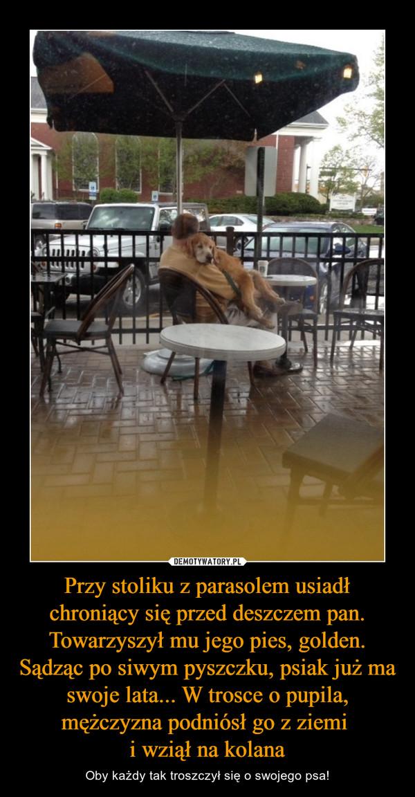 Przy stoliku z parasolem usiadł chroniący się przed deszczem pan. Towarzyszył mu jego pies, golden. Sądząc po siwym pyszczku, psiak już ma swoje lata... W trosce o pupila, mężczyzna podniósł go z ziemi i wziął na kolana – Oby każdy tak troszczył się o swojego psa!