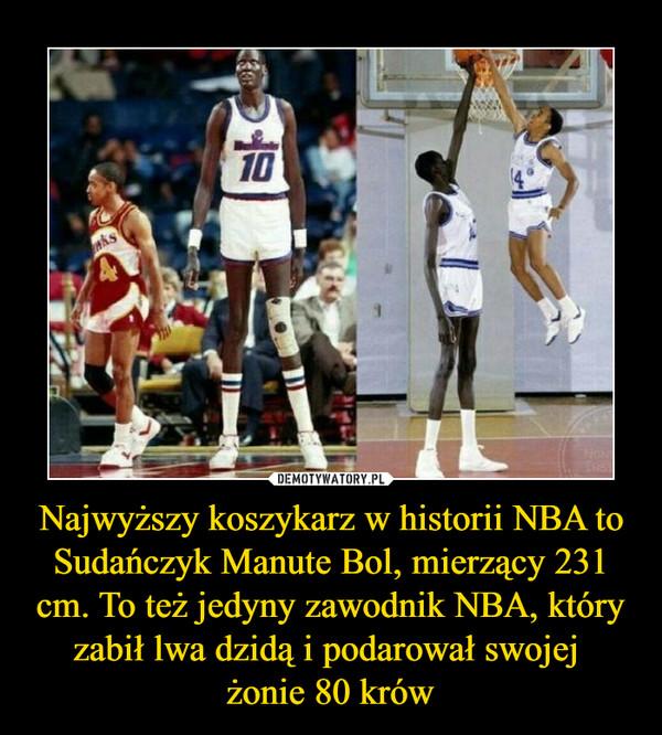 Najwyższy koszykarz w historii NBA to Sudańczyk Manute Bol, mierzący 231 cm. To też jedyny zawodnik NBA, który zabił lwa dzidą i podarował swojej żonie 80 krów –