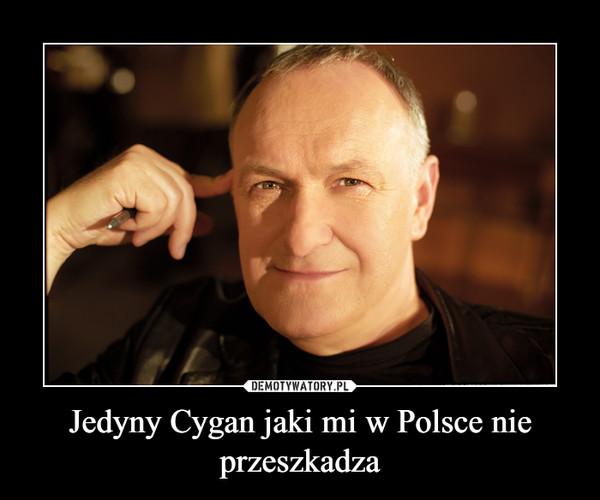 Jedyny Cygan jaki mi w Polsce nie przeszkadza –