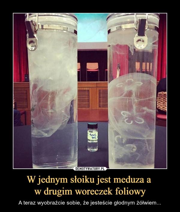 W jednym słoiku jest meduza a w drugim woreczek foliowy – A teraz wyobraźcie sobie, że jesteście głodnym żółwiem...