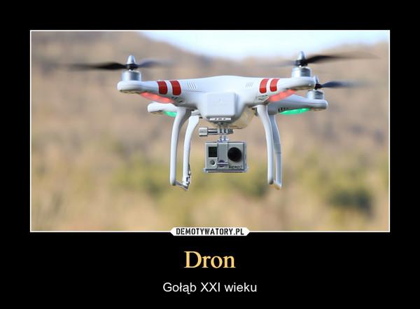 Dron – Gołąb XXI wieku