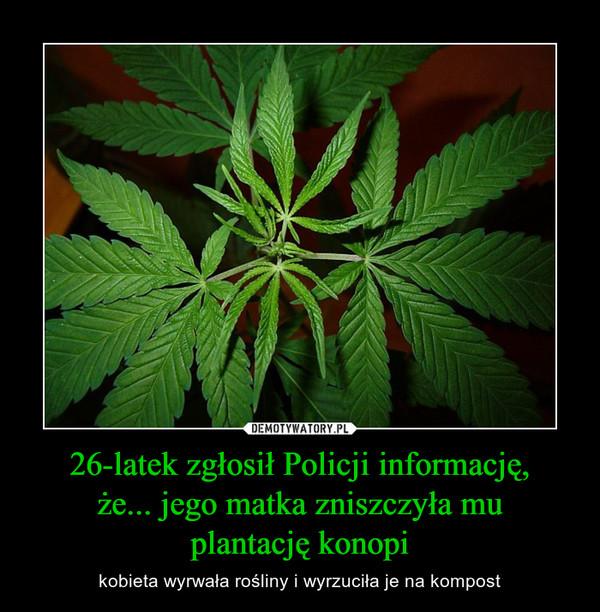 26-latek zgłosił Policji informację,że... jego matka zniszczyła muplantację konopi – kobieta wyrwała rośliny i wyrzuciła je na kompost