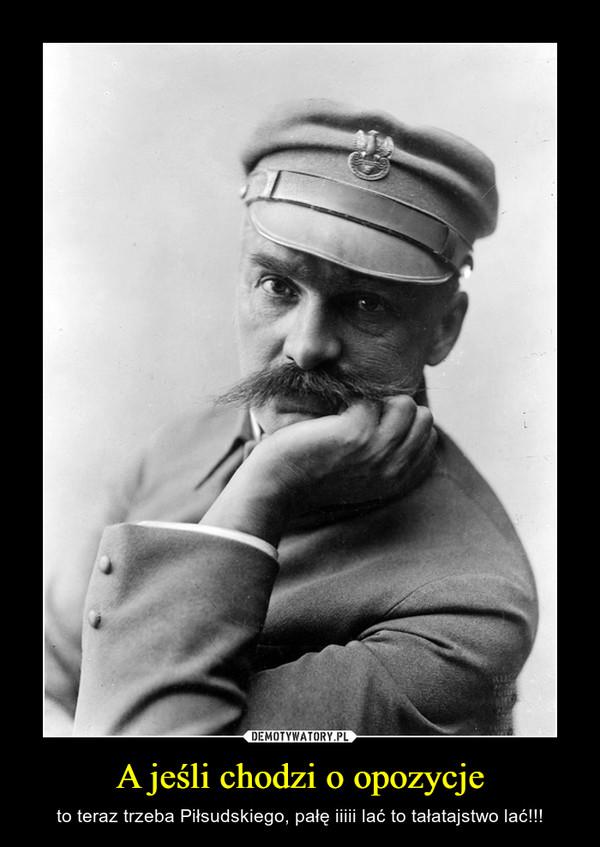 A jeśli chodzi o opozycje – to teraz trzeba Piłsudskiego, pałę iiiii lać to tałatajstwo lać!!!
