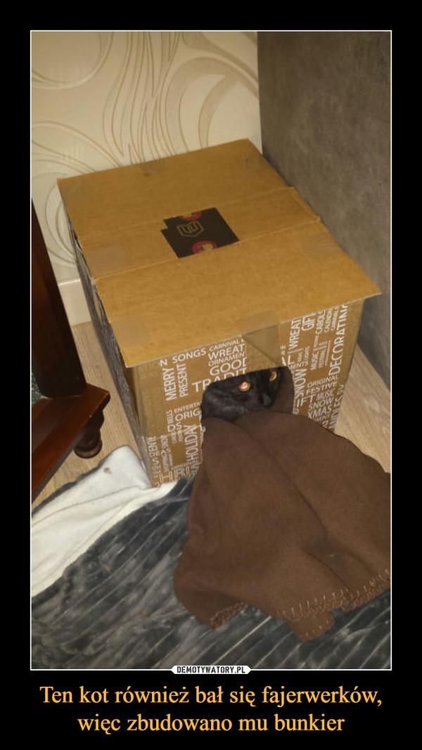 Ten kot również bał się fajerwerków, więc zbudowano mu bunkier –