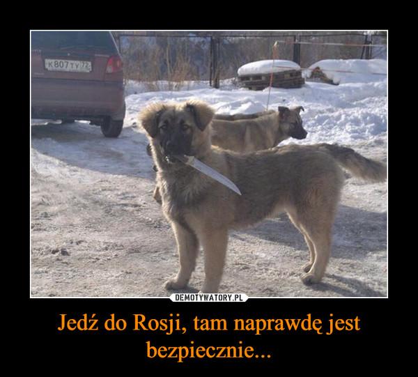 Jedź do Rosji, tam naprawdę jest bezpiecznie... –