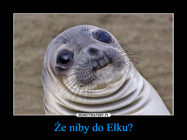 Że niby do Ełku? –