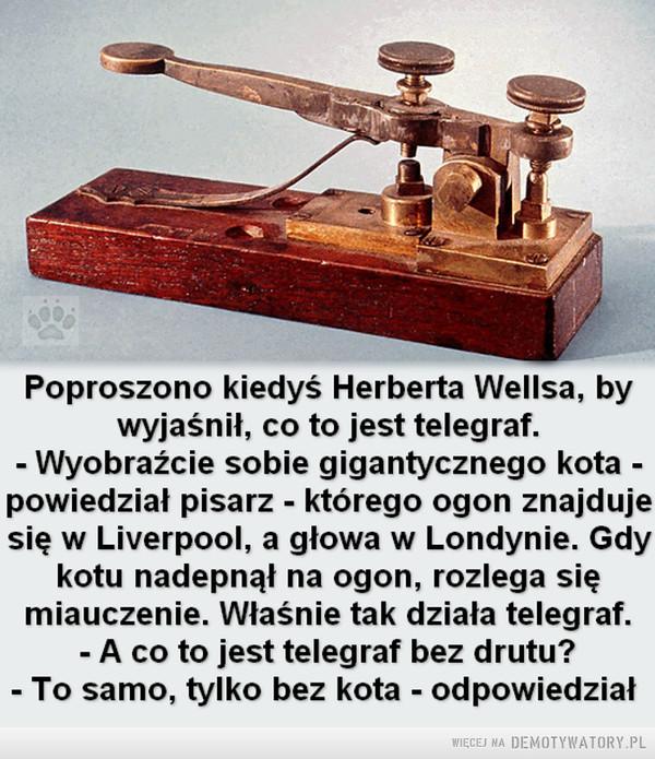 Działanie techniki trzeba ogarniać –  Poproszono kiedyś Herberta Wellsa, bywyjaśnił, co to jest telegraf.- Wyobraźcie sobie gigantycznego kota -powiedział pisarz - którego ogon znajdujesię w Liverpool, a głowa w Londynie. Gdykotu nadepnął na ogon, rozlega sięmiauczenie. Właśnie tak działa telegraf.- A co to jest telegraf bez drutu?- To samo, tylko bez kota - odpowiedział