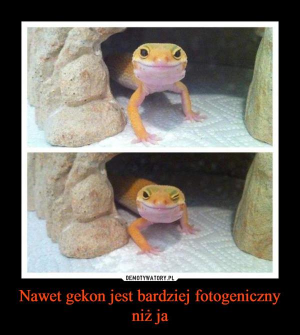 Nawet gekon jest bardziej fotogeniczny niż ja –