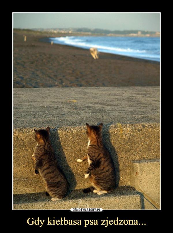 Gdy kiełbasa psa zjedzona... –