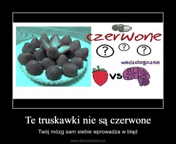 Te truskawki nie są czerwone – Twój mózg sam siebie wprowadza w błąd