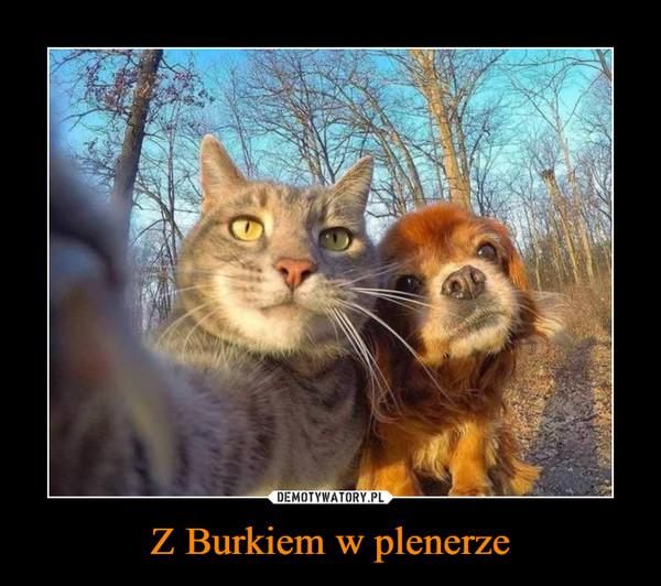 Z Burkiem w plenerze –